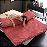 Colchón plegable del piso del futón, Colchón de piso japonés suave Futón plegable Tatami Tatami Mats for dormir Adultos...