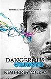 Dangerous Visions: Book 2 of The Spiritual Gift Series (The Spiritual Gifts Series)
