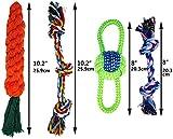 Zoom IMG-1 honeyguaridan giocattoli masticabili per cani
