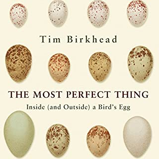 The Most Perfect Thing cover art