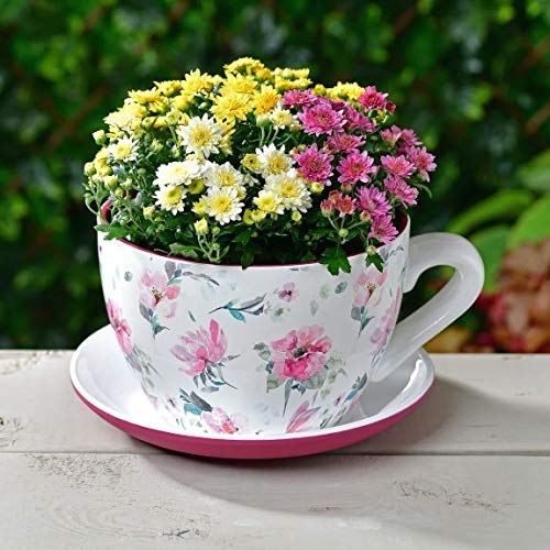 Z&Q BROS LTD Fabulous Decorative Feature Giant Teacup & Saucer Planter Flowers Pot Garden Ornament - Floral