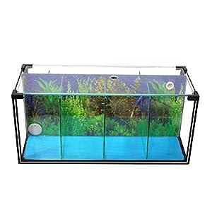 Aquarium-Zucht-Becken-Betta-24-L-Garnelen-Aquarium-Aufzucht-Aquarium-Kampffisch-Aquarium