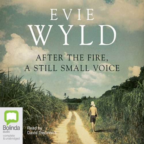 After the Fire, a Still Small Voice cover art