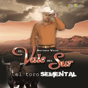 El Toro Semental