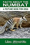 Facts About The Numbat (A Picture Book For Kids, Vol 121)