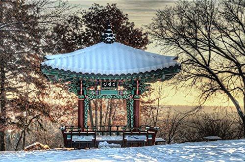 Puzzle Für Kinder Erwachsene Der Koreanische Pavillon des Royal Alberta Museum 1000 Stück Psychedelische Stichsäge