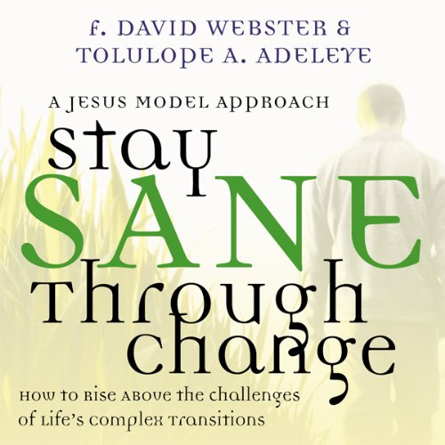 Stay Sane Through Change audiobook cover art