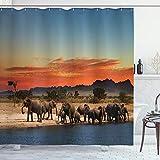ABAKUHAUS Elefant Duschvorhang, Afrika Safari Wildlife, mit 12 Ringe Set Wasserdicht Stielvoll Modern Farbfest & Schimmel Resistent, 175x200 cm, Hellblau Orange Braun