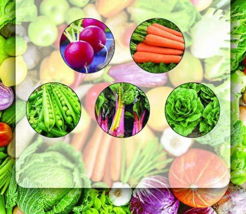 500PCS Premium Winter Gemüsesamen Sammlung Bio Non-GMO Erbstück Samen Cherry Belle Radieschen, Karotten, Zuckerschoten, Regenbogen Mangold, Salat Kaltes Wetter Gemüsesamen