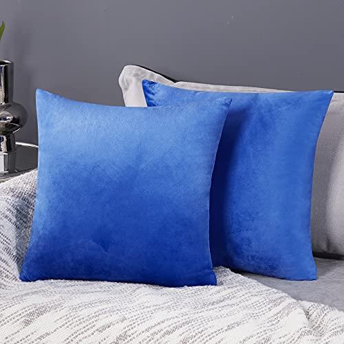 Deconovo Fundas para Cojines de Almohada del Sofá Cubierta Suave Decorativa Protector para Hogar 2 Piezas 50 x 50 cm Azul