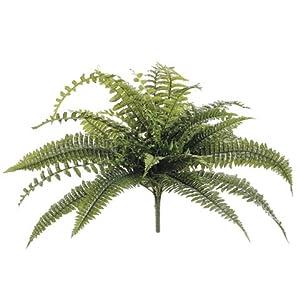 28″ Dragon Fern Silk Plant -41 Leaves (Pack of 6)