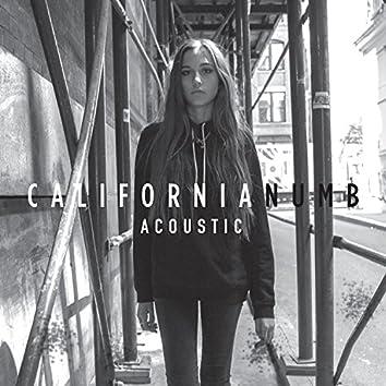 California Numb (Acoustic)