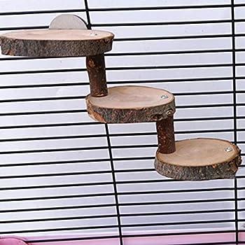 Generp-AT Jouet Hamster Échelle en Bois de Hamster Mini Jouet de Pont pour Animaux de Compagnie Sûr Escalier d'escalade pour Animaux de Compagnie Outil de Formation pour Hamsters Sugar Well-Suited