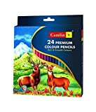 Camel Premium Full Size Colour Pencil - 24 Shades