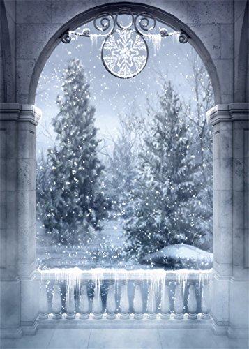 YongFoto 1,5x2,2m Vinilo Fondo de Fotografia Navidad Cuento de Hadas Puerta arqueada...