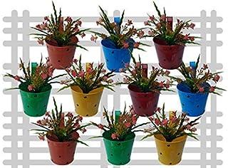 Railing planter impex Round Butterflyes Railing Planter/Plant pots (Multicolor, Pack of 10)