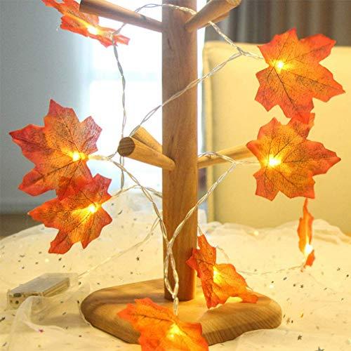 Ybzx Guirnalda de Luces de Arce, Luces LED de Hadas, guirnaldas de Luces Decorativas, alimentadas por USB, con Control Remoto, decoración para el jardín de Acción de Gracias, Navidad