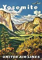 航空会社ヨセミテ国立公園アメリカ、ブリキの看板、ヴィンテージ鉄の金属板の塗装ノベルティ装飾クラブカフェバー