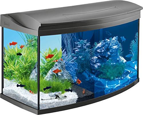 Tetra AquaArt Evolution Line LED Acquario 100 L - Set Completo, Incluso Illuminazione a LED, Interruttore Luce Diurna e Notturna, Filtro Interno EasyCrystal e Riscaldatore per Acquari, Antracite