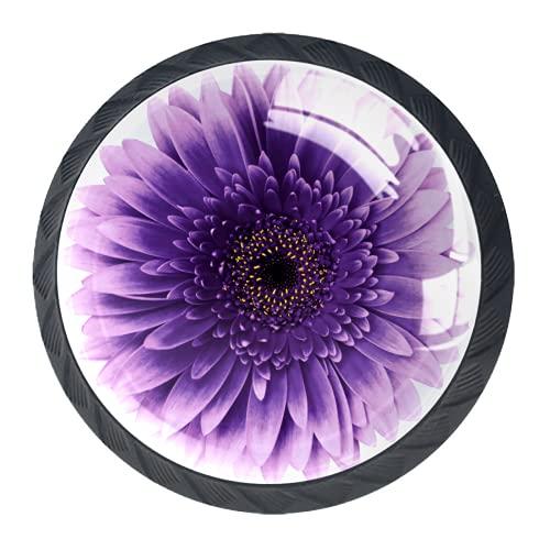 Manijas para cajones Perillas para gabinetes Perillas Redondas Paquete de 4 para armario, cajón, cómoda, cómoda, etc., Flor de gerbera rosa violeta