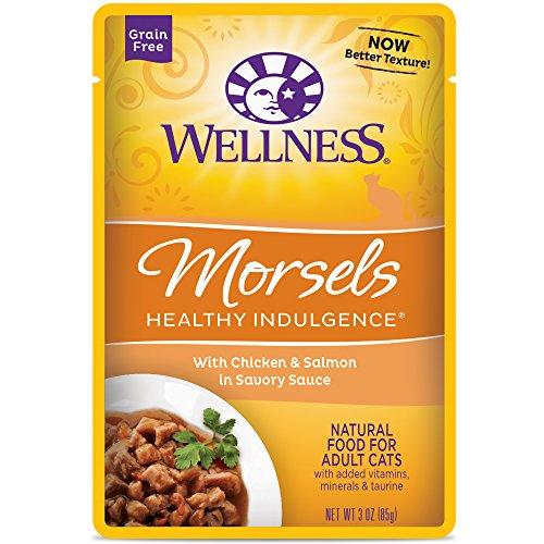 Wellness Morsels Healthy Indulgence