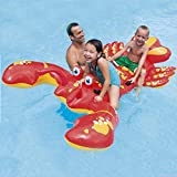 HXINFLABLE Gonflable Ride-on Gonflable Piscine, Floatie Piscine Radeau De Piscine Rangée Gonflable avec Vannes Rapides pour...