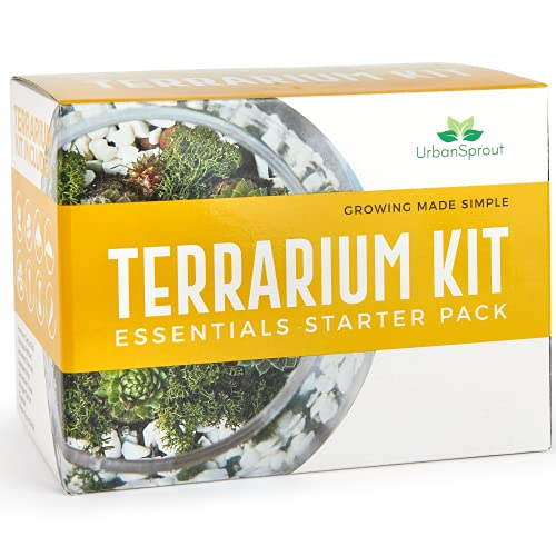 Plant Terrarium Kit for Succulent Plants and Cacti. Gardening Set Includes Cactus Soil, Moss, Gravel and Step-by-Step Guide. Great Gift idea for Women and Men