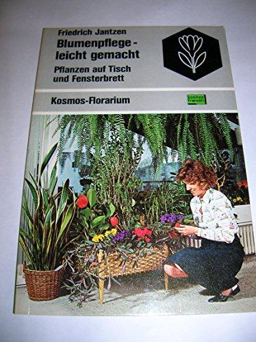 Blumenpflege leicht gemacht. Pflanzen auf Tisch und Fensterbrett