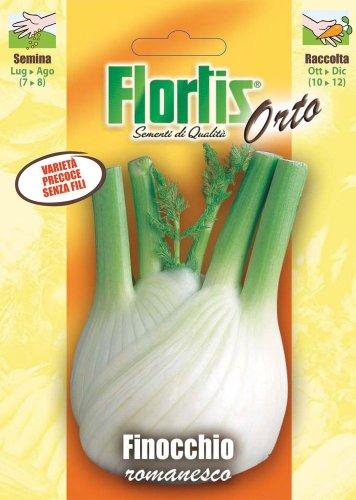 Gemüsesamen - Römischer Fenchel von Flortis