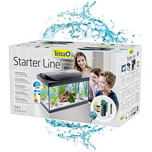 TETRA Starter Line - Aquarium LED Complet pour Débutants -...