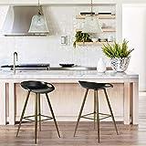 FurnitureR Conjunto de 2 taburetes de Bar Modernos contemporáneos sin Brazos de Altura Fija, Asiento de PP con Base de Metal Negro&MARRÓN