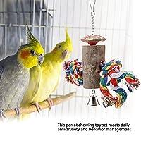 実用的で繊細な耐久性のある 鳥の噛むおもちゃ、ペットの鳥の噛む吊り玩具、オフィスホームの安全な頑丈な