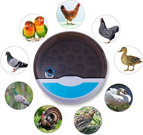 Broedmachines automatisch draaien broedei Hatcher Pokemon Go gemakkelijk waar te nemen for Kippen Eenden Vogels Gebruik van de Familie 9 eieren LQH