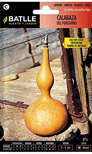 Batlle Gemüsesamen - Flaschenkürbis (Samen)