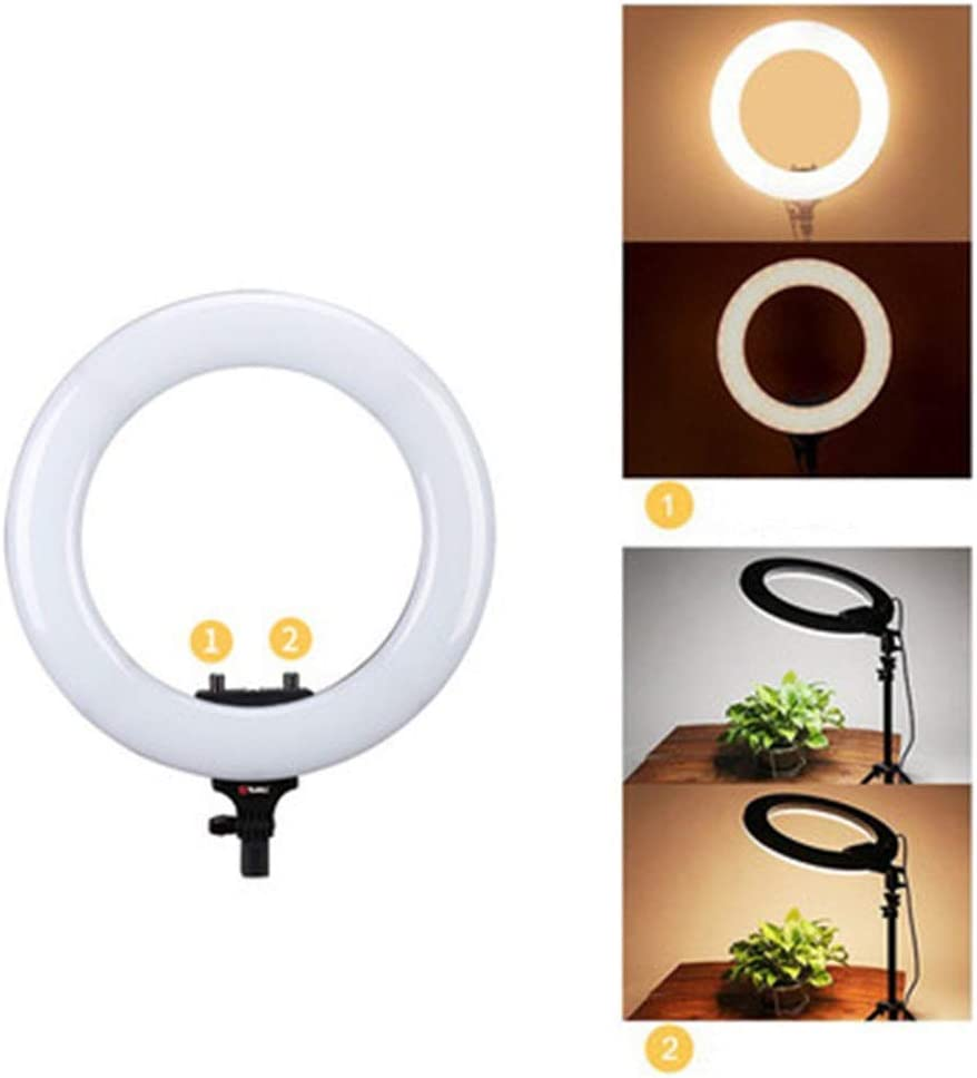 Color : Black, Size : 14inch FeliciaJuan-Home 14 Inch Video Live Fill Light Anchor Mobile Phone Self-Timer Beauty Photography Light Led Ring Light Camera Photo Video LED Lighting Kit with Bracket