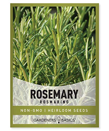 Rosemary Seeds for Planting - It is A Great Heirloom, Non-GMO Herb Variety-...