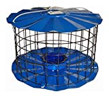 Erva蓝鸟进纸器 - 包括膳食蠕虫杯 - 旨在让松鼠手续 - 美国制造