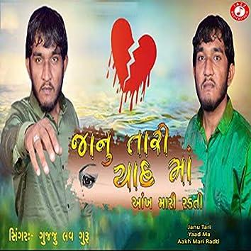 Janu Tari Yaad Ma Aakh Mari Radti - Single