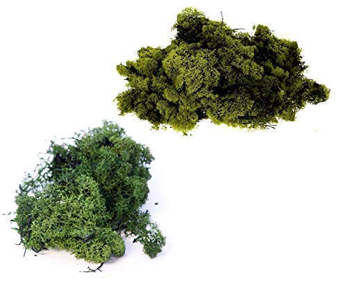 INERRA Finland Moss - Pack of 2 Mixed Colours 25g Bags - Reindeer Moss Craft Plants Pots Flowers Display Modelling (Dark Green & Olive)