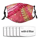Cerise Pink Gold an Indian Sari Bride Wedding Gown Men Women Adjustable Earloop Face Cover Anti Pollution Washable with 6 Filters