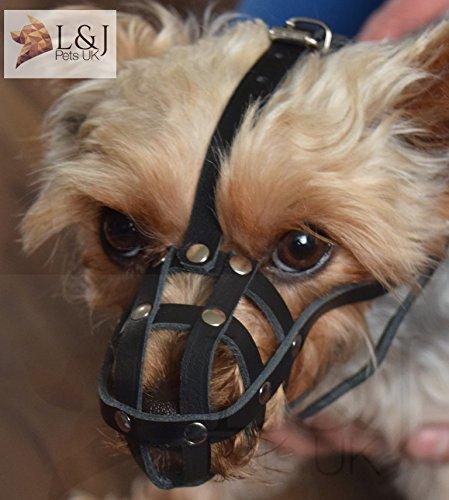 Licht Leder Hund Maulkorb für Chihuahua Yorkshire Terrier Mini Krug und andere