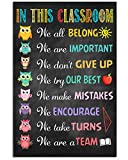 Ananas Pru in This Classroom WE Belong Important Colorful Owls Kindergarten Nursery Class School Art Picture Decor NO Frame Poster (Full Size 12x18/16x24/24x36) (12' x 18' (1'=2.5cm))