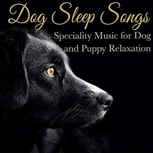 Dog Sleep Songs: Speciality Music for Dog and Puppy Relaxation
