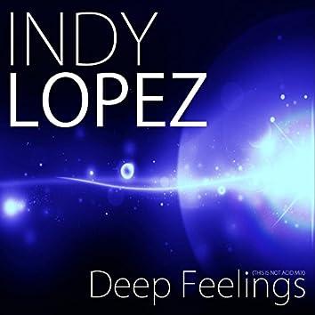 Deep Feelings (This Is Not Acid Mix)