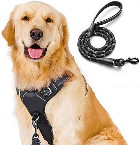 rabbitgoo No-Pull Dog Harness Leash Set Heavy Duty Halter Harness with Leash for Large Dogs Reflective Adjustable Pet Vest Harness Outdoor Training Leash, Large, Black