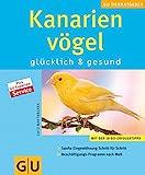 Kanarienvögel: glücklich & gesund