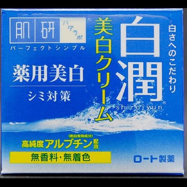 どう?どうしたのメガロポリス【まとめ買い】肌研 白潤 薬用美白クリーム 50g ×2セット