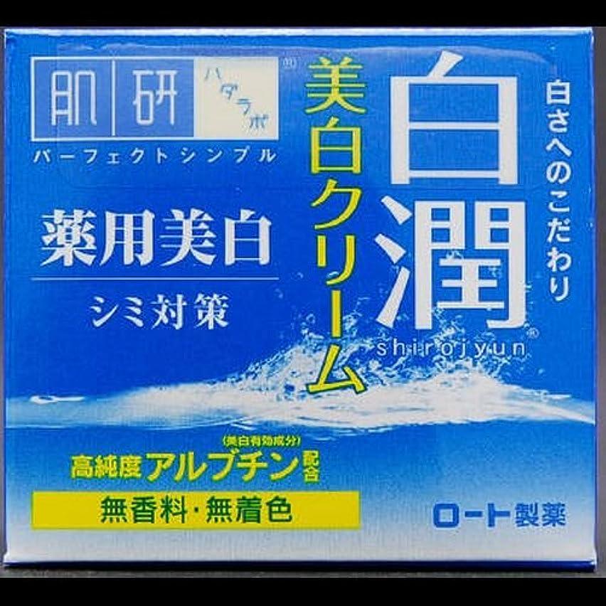準備した一過性中間【まとめ買い】肌研 白潤 薬用美白クリーム 50g ×2セット