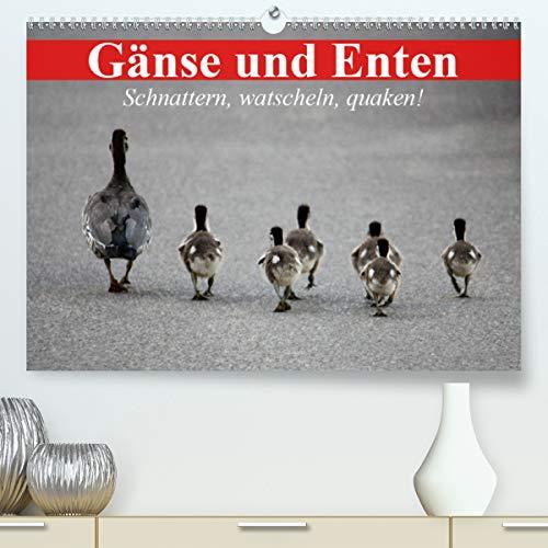 Gänse und Enten. Schnattern, watscheln, quaken! (Premium, hochwertiger DIN A2 Wandkalender 2021, Kunstdruck in Hochglanz)