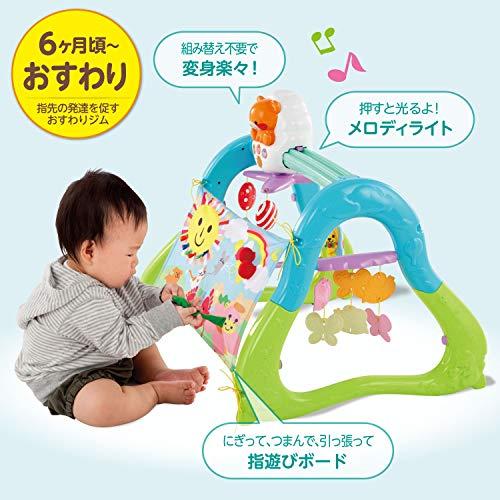 ピープルうちの赤ちゃん世界一全身の知育メリー&ジム